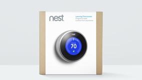 Nest 02